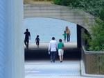 歩道橋からトンネル